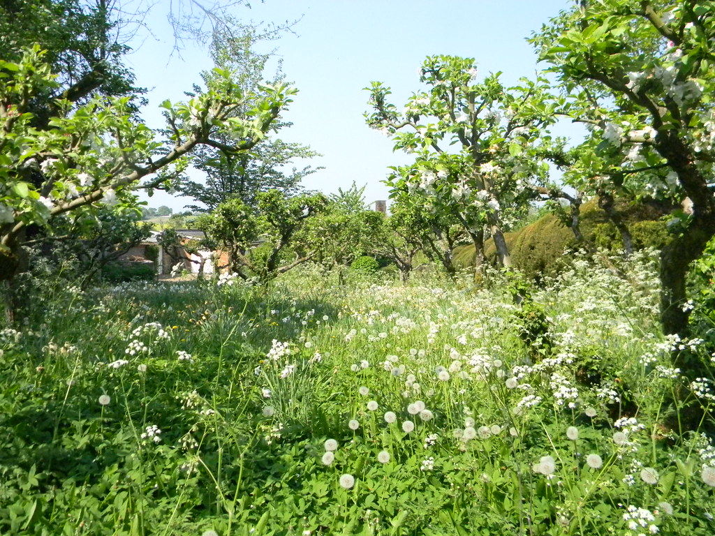 Orchard, Ashe House Overton Circular