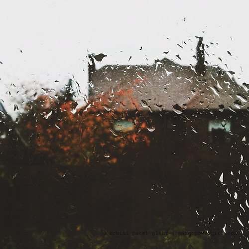 rainy fall
