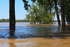 Harbor Town on Mud Island, Memphis, TN