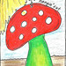 ICAD-Mushroom-18