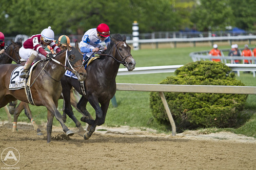 #3 Pulls ahead in the Sir Barton Stakes