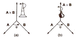 CBSE Class 11 Physics Notes Vectors