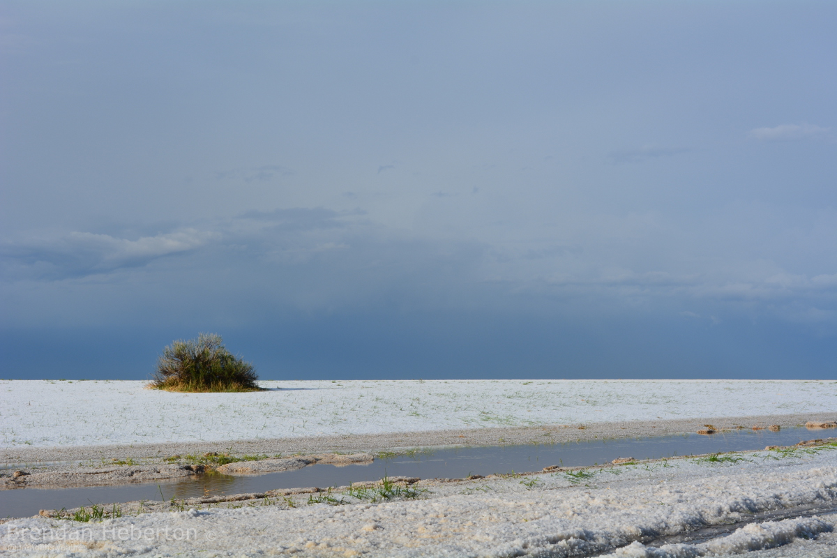 Hail aftermath, north of Strasburg, CO.