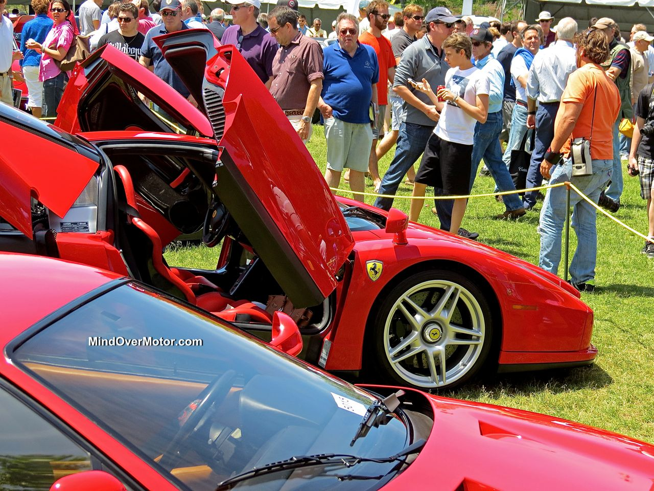 Ferrari Enzo at the Greenwich Concours