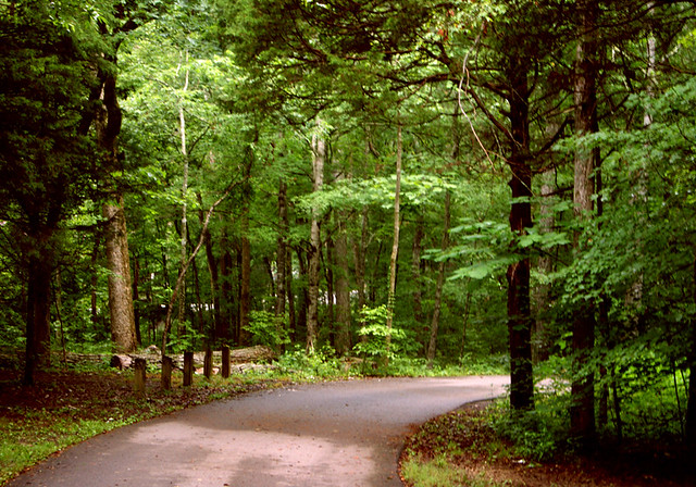 Campground Road - Cedars of Lebanon State Park - Tennessee