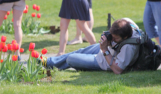 People Taking Pictures of Flowers