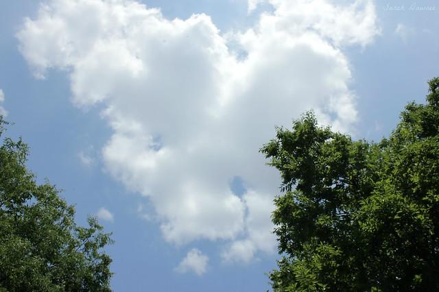 Summer sky...