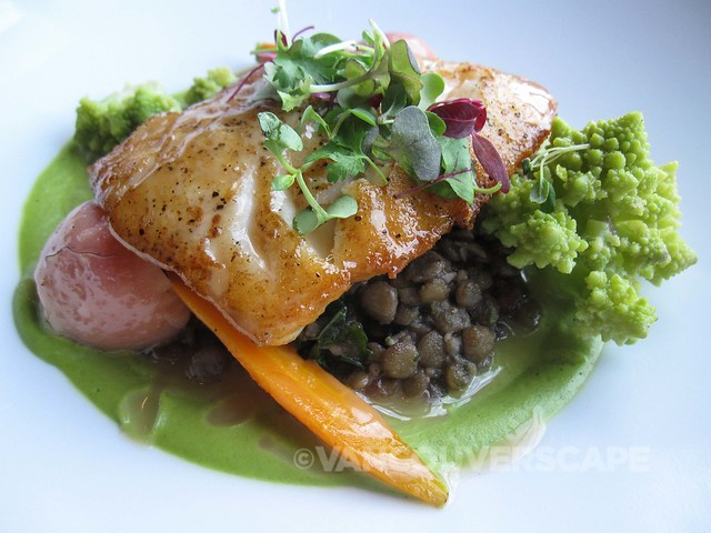 Pan-roasted Lingcod, buttered Puy lentils, kale, fennel puree, warm bacon, apple cider vinaigrette