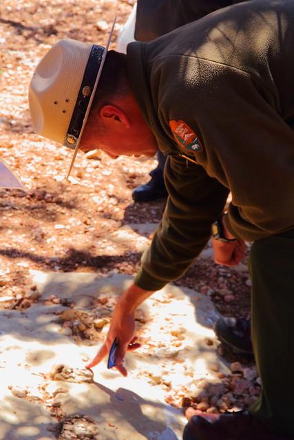 IMG_5643 Ranger Program: Fossil Walk