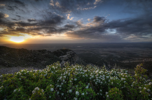 sunset flower nature landscape nationalpark nikon colorado unitedstates outdoor tokina mesaverde overlook hdr d300 mesaverdenationalpark landscapephotography photomatix 1116mm