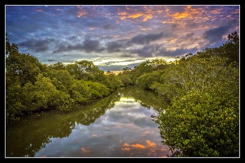 trees sunset reflection clouds river cloudsstormssunsetssunrises