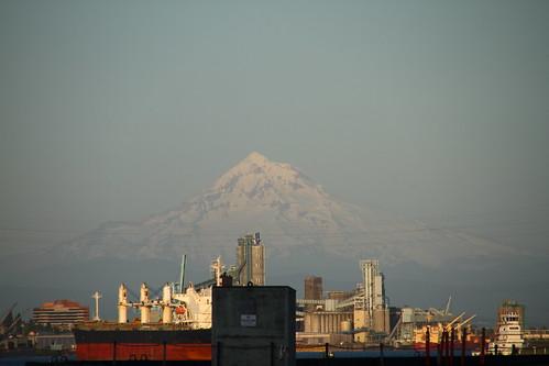 Portland 031