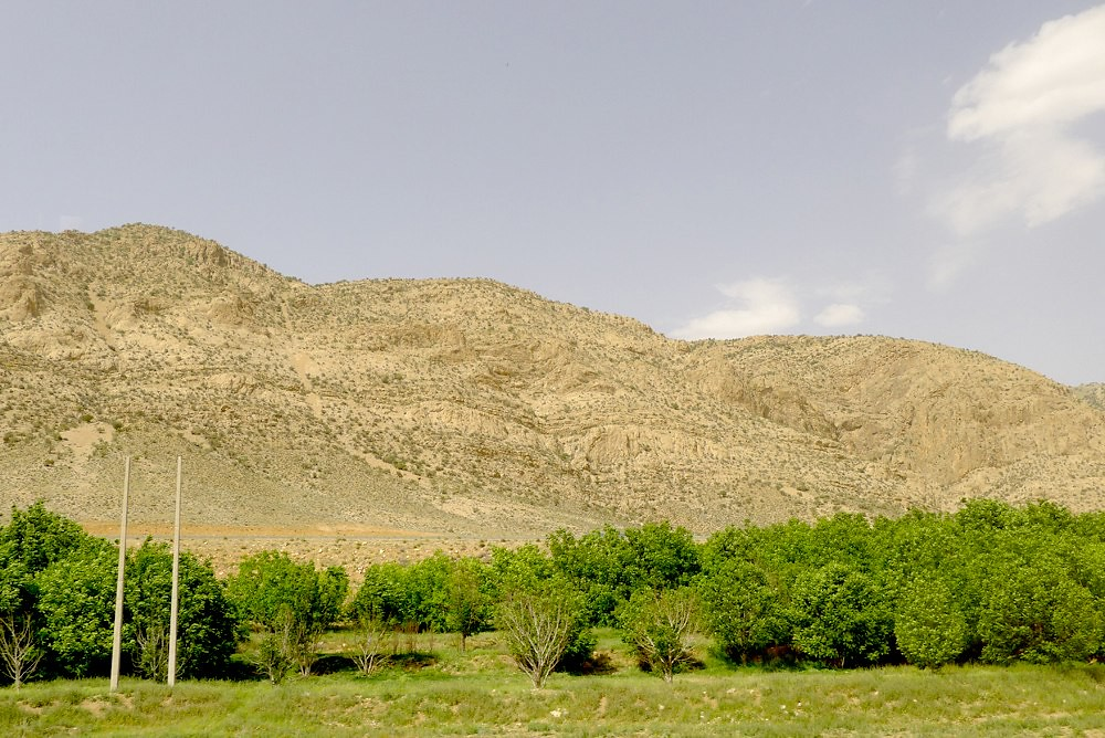 yazd-shiraz-L1030128