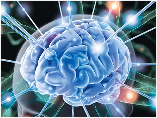 Hội chứng tiểu não và những điều cần biết