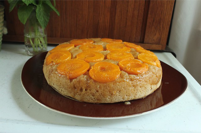 yeasted apricot cake.