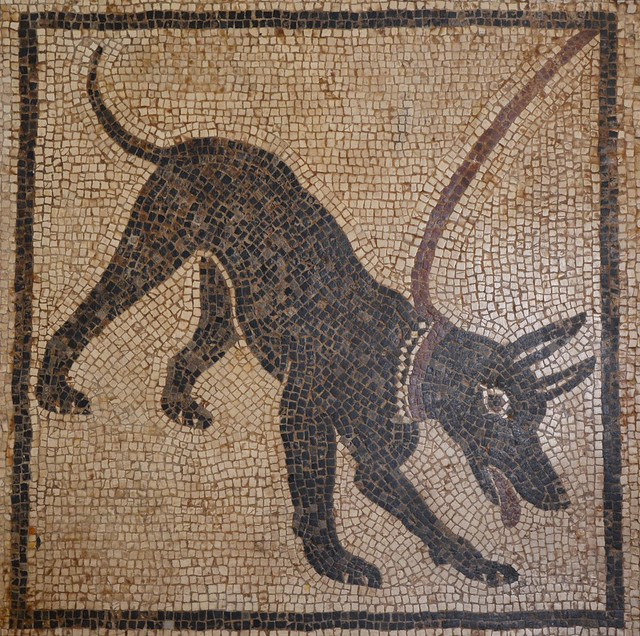Cave canem mosaic from Pompeii, Naples National Archaeological Museum