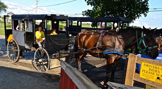 Horse Buggy Tour - Amish Tour - Lancaster County PA