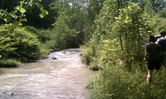 Mud Lick Creek