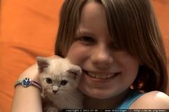 shea wants a kitten @ her house