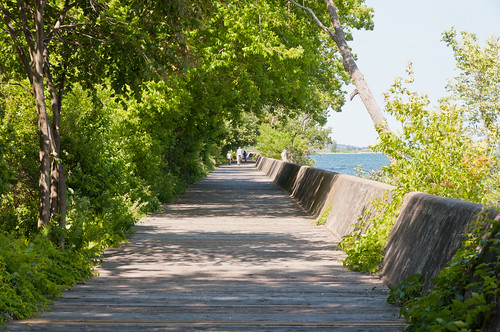 Ward's Island Boardwalk