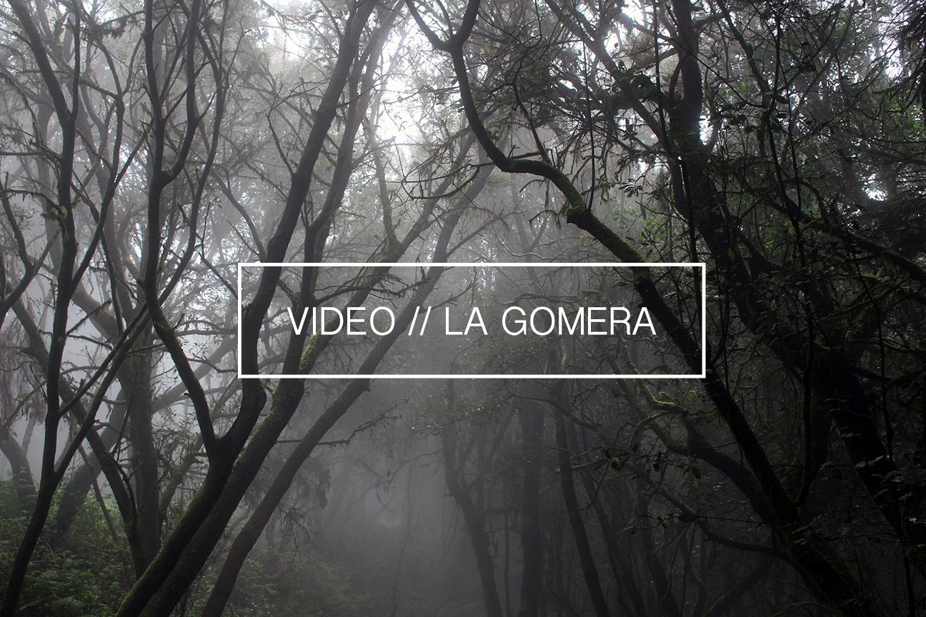 Video La Gomera