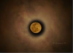 moon, corona, circle, astronomical object,