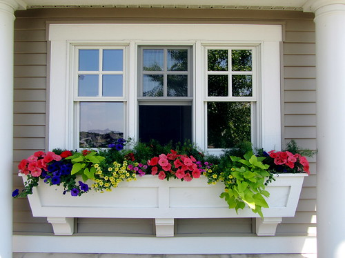 Window box perfection
