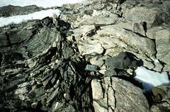 E of Mt Sullivan drag-folded shear zone contact