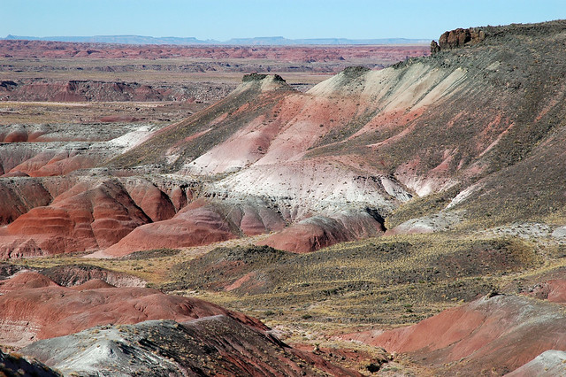 Petrified Forest 5