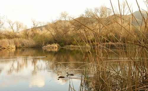 Kumeyaay Lake in Mission Trails