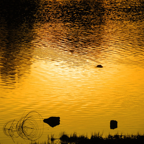 italy lake sunrise canon alba lombardia soe flickraward laghidibrianza ringexcellence flickrstruereflection1 flickrstruereflection2 sx40hs canonpowershotsx40hs