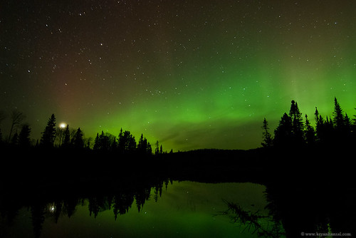 Northwoods Northern Lights