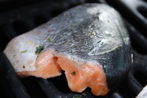 Salmon on a Cold Grill
