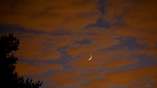 sunset sky moon color tree night clouds contrast canon evening skies ky crescent louisville