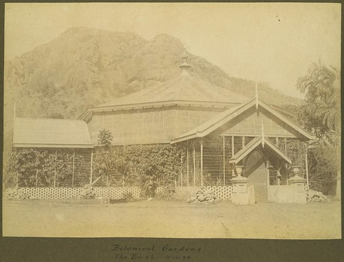 Bush House at the Townsville Botanical Gardens, ca.1900