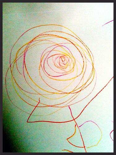 DB drew a rose