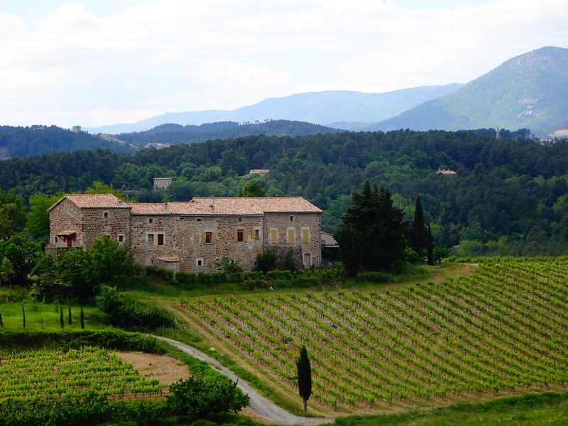 Vineyard in Vinezac