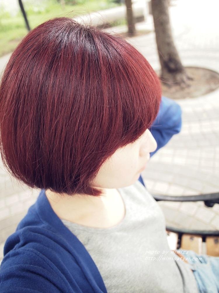 Happy Hair 染髮 (16)