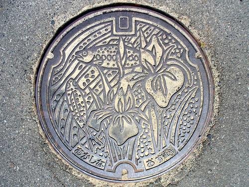 Akashina Nagano, manhole cover 2 (長野県明科町のマンホール2)