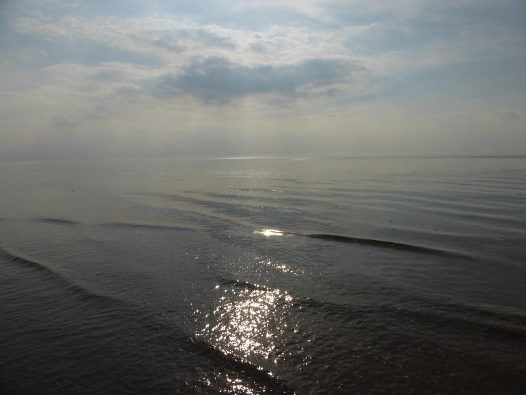 49 Silky sea, Hunstanton