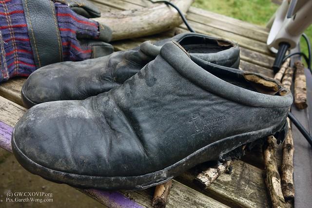My beloved Panama Jack Clog shoes _DSC4844