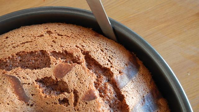 Chocolate Chiffon Cake 15