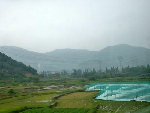 Zhejiang-Wenzhou-Ningbo-train (57)