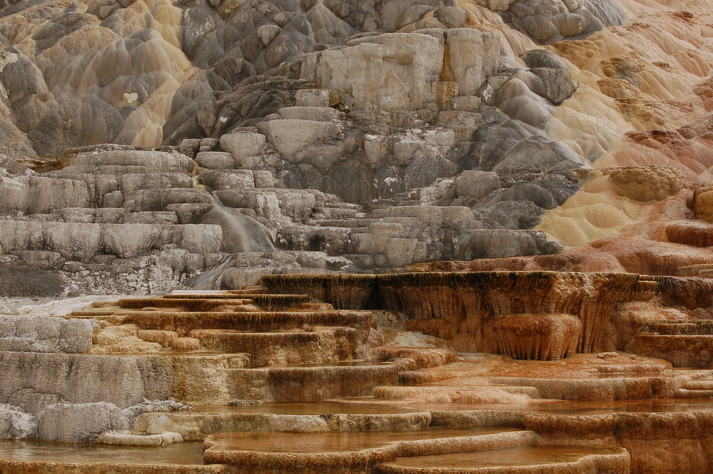 Mammoth Hot Springs - lower terrace