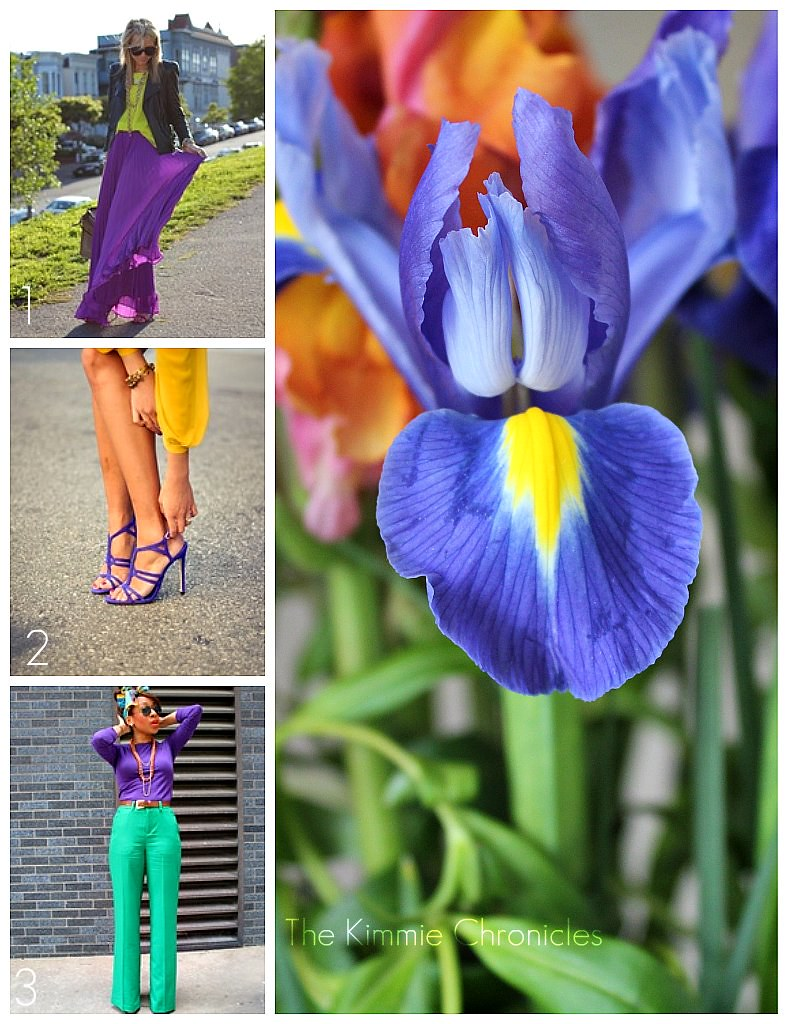 Purple and Yellow Collage