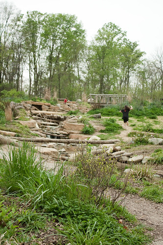 Charles and Marge Schott Nature Playscape