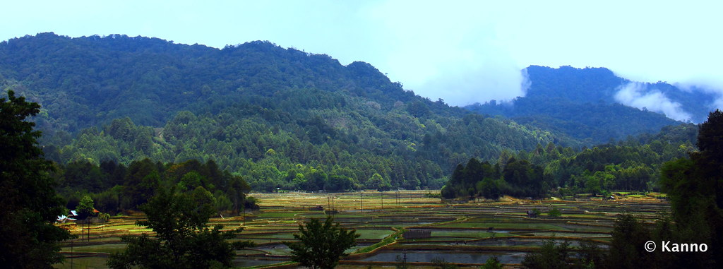 View from the village at Ziro