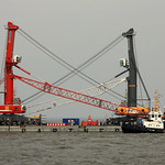 TAUCHER O.WULF 3 with two LIEBHERR - Mobile Harbour Cranes   for Antwerp