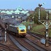 The East Anglian Leaves Norwich