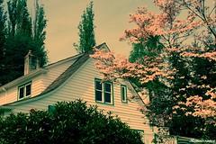 The Monte Villa Farmhouse